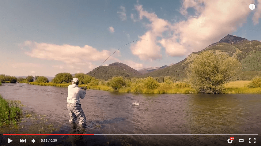 Jackson hole fly fishing grand fishing adventures for Fishing license wyoming