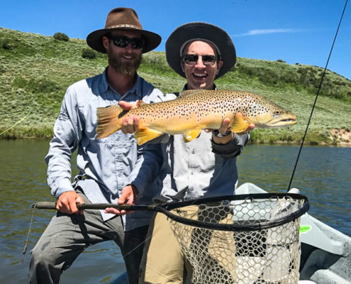 Fly fisherman holds a brown trout on the green river