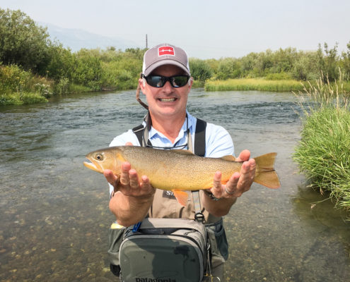 Fly fisherman holds a cutthroat trout in Jackson Wyoming