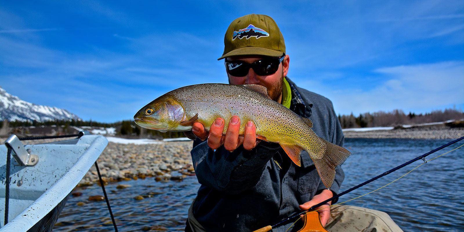 Fly Fishing Trips Jackson Hole
