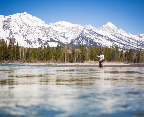 Man fly fishes on the snake river in grand teton national park