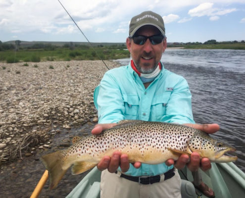 Fly fisherman holds a large brown trout on the green river wyoming