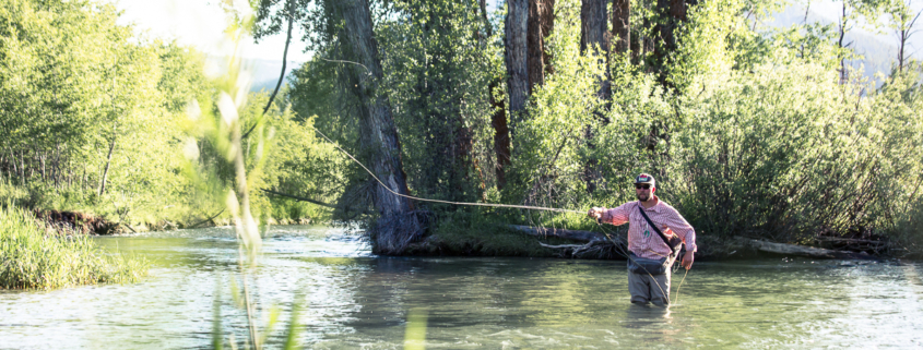 Jackson Hole fly fishing guide