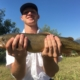 Spring Creek Cutthroat Trout